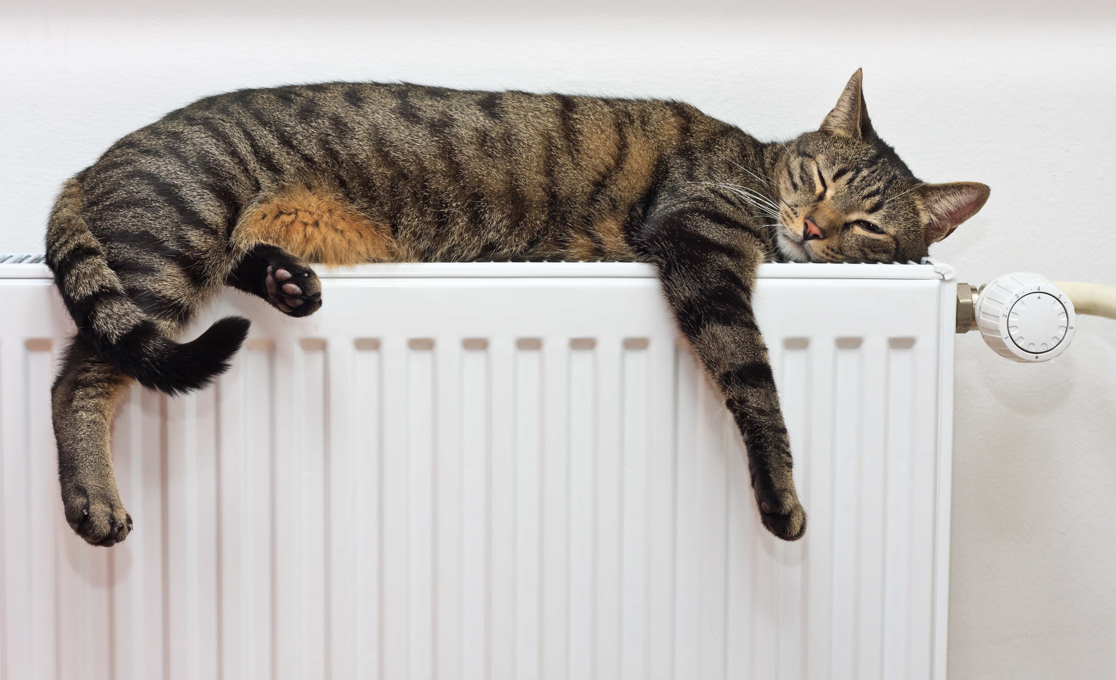 Electric Heating Solutions